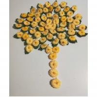 Albero di mimose- Luisa C.