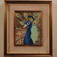 Golden peacock - Giada M.